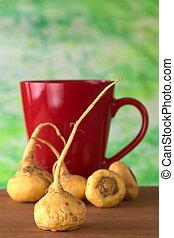 Peruvian Ginseng (Sp. Maca, lat. Lepidium meyenii) which is...