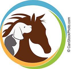pes, kočka, a, kůň, emblém