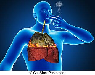 pesado, cigarrillo, fumador