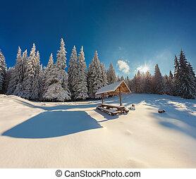 pesado, montaña, invierno, después, nevada, cuento, bosque,...