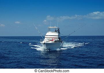 pesca del deporte, barco