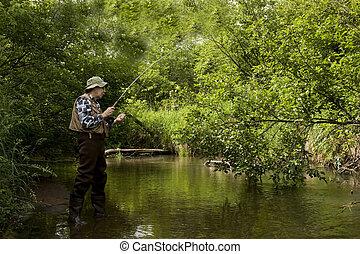 pesca, trota