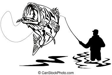 pescador, gracioso, un, bajo