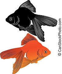 Koi pesce rosso carpa koi tatuaggio stile oro carpa for Carpa pesce rosso