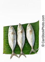pesce steamed, scombro, isolato, fondo, mettere, foglia, bianco, banana