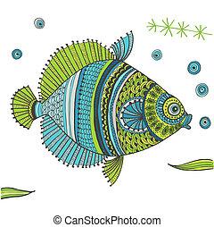 pesce tropicale, vettore, -, fondo