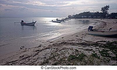 peschereccio, su, il, riva, di, uno, isola tropicale