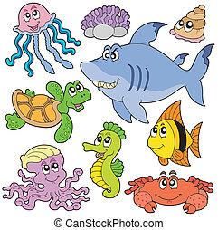 pesci, 2, animali, mare, collezione
