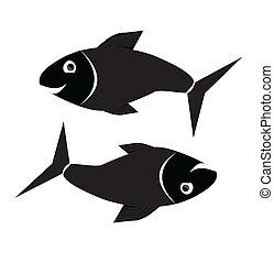 pesci, bianco, nero, isolato