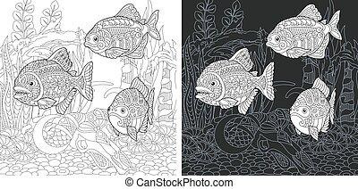 pesci, coloritura, pagina, piranha