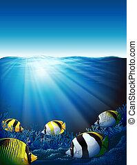 pesci, mare, luce sole, sotto