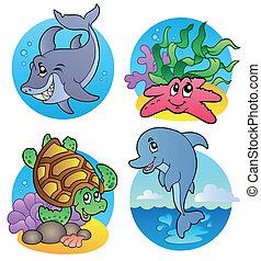 pesci, vario, animali, mare