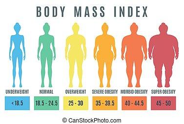 peso, obesidad, cuerpo, masa, normal, hembra, index., ilustración, sobrepeso