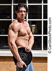 peso, shirtless, muscolare, disco, presa a terra, uomo