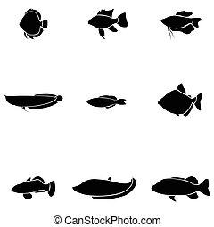pesque icono, conjunto