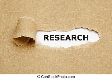 pesquisa, papel rasgado, conceito