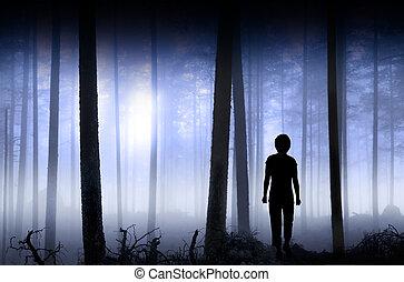 pessoa, em, azul, nebuloso, floresta