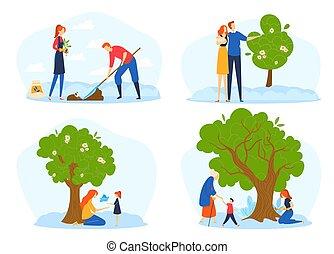 pessoas, fases, jovem, ciclo vida, crescimento, gandparents, metáfora, árvore., grande, par, semente, crescendo, crescer, família, planta, árvore