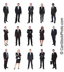 pessoas, gerentes, negócio executivo