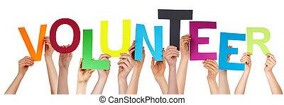 pessoas, mãos, segurando, coloridos, palavra, voluntário