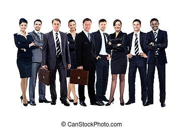 pessoas negócio, -, jovem, atraente, equipe, elite
