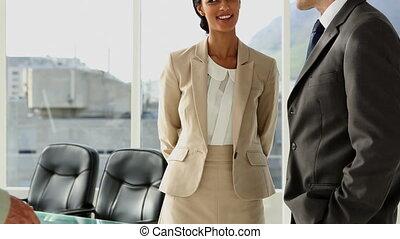 pessoas negócio, reunião, e, greetin