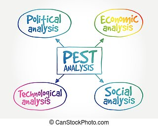 PEST analysis mind map