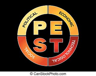 PEST Business Infographic target