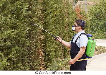 gardener is Spraying