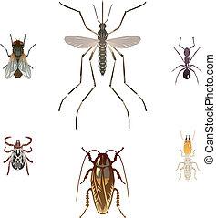 peste, seis, insectos, ilustraciones