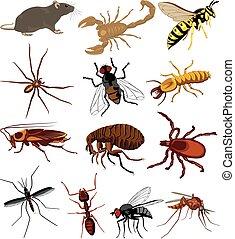 pestes, couleur, insectes, scorpion, -, rat, icône