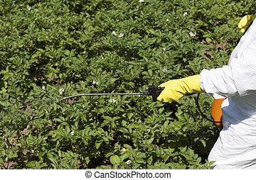 pesticida, rociar