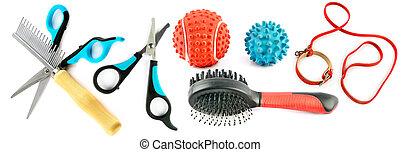 Pet accessories and toys isolated on white