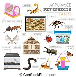 Pet appliance icon set flat style isolated on white. Insects care collection. Create own infographic about beetle, bug, butterfly, stick, mantis, spider, cricket etc. Vector illustration