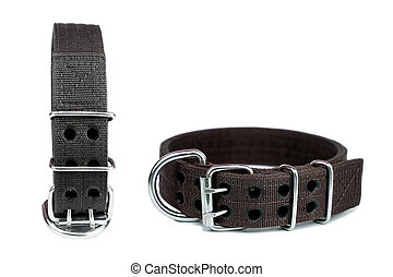Pet collars for dog on isolated white