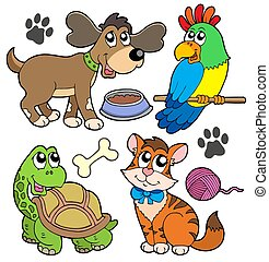 Pet collection - isolated illustration.