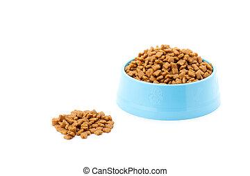 pet dried food in cyan plastic bowl