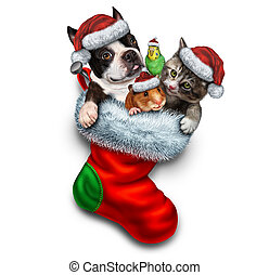 Pet Holiday Stocking - Pet holiday stocking and Christmas...
