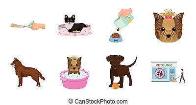 Pet icons in set collection for design. Care and education vector symbol stock web illustration.