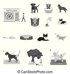 Pet monochrome icons in set collection for design. Care and education vector symbol stock web illustration.