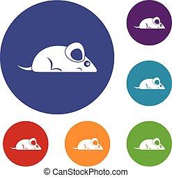 Pet mouse icons set