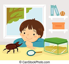 Pet stag beetle, Japanese rhinoceros beetle or Japanese horned beetle. Little kid playing with his pet kabutomushi beetle at home.