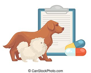 Pet vet veterinary doctor animal clinic dog, cat pills vector flat icon