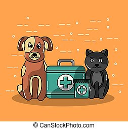 pet veterinary clinics and animal with cat and dog