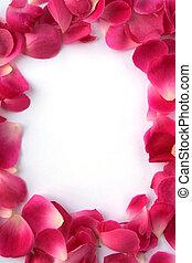 Roses' petals for frame
