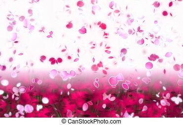 petali, astratto, nevicata, sakura, fondo