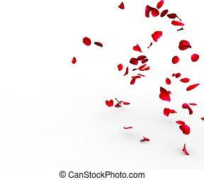 petali rose, cadere, su, uno, superficie