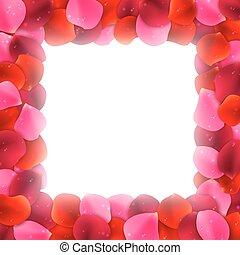petali rose, cornice