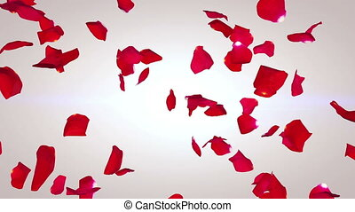 """Petals of red roses falling down in an arty way"""