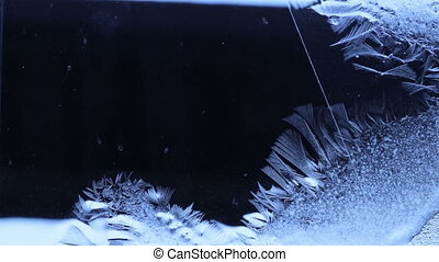 Petals of the frozen water winds on the glass